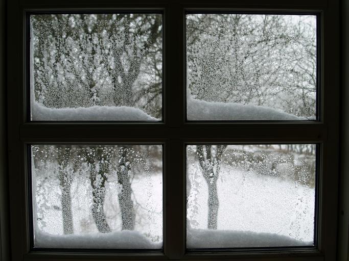 Zasnežené stromy za oknom s čiernym rámom